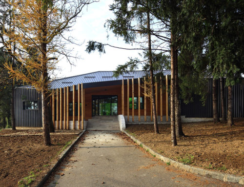 Small Administration House and Big Pine Trees by Entasis; Bosnia and Herzegovina