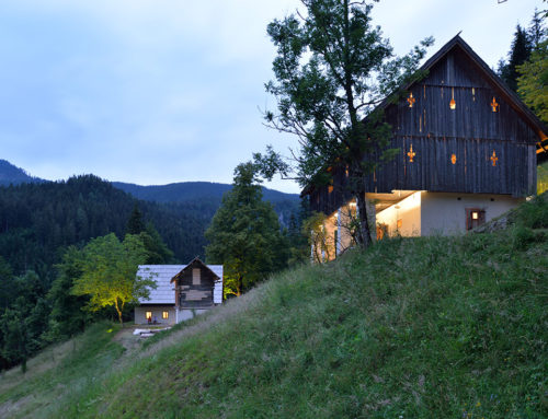 Renovation of the Vrlovčnik Homestead by MEDPROSTOR; Slovenia