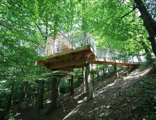 Oaktreehouse – Sleep in the treehouse by Anna Malinowska & Peter Valentsik; Slovakia