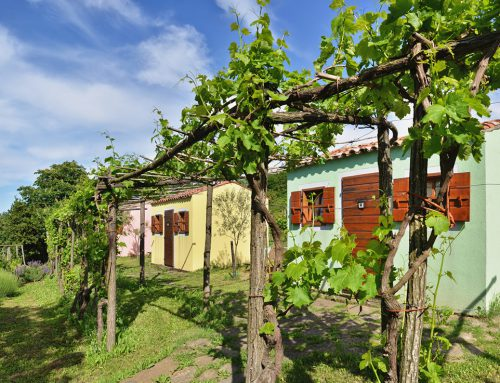 Holiday houses of Slovenian Istria