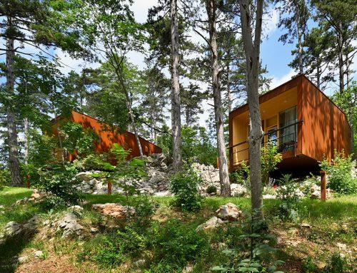 FOREST VILLAGE THEODOSIUS by Marko Lavrenčič; Slovenia