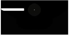 BigSEE Logo