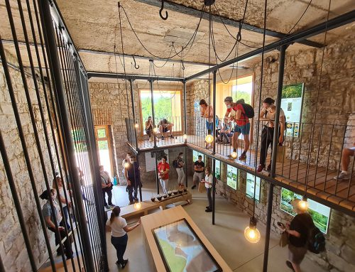 """Renovation of the abandoned Cellar Space into the Info Point """"Treasury of the town of Črnomelj"""""""