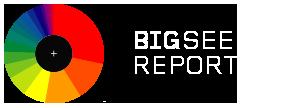 BigSEE Report